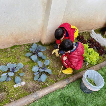 Patio Cuarto Creciente Montessori Logroño (6)